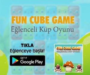 Fun Cube Game - Eğlenceli Küp Oyunu indir
